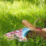 picnic setting on green grass