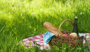 picnic setting on green grass